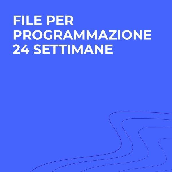 file programmazione palestra 24 settimane